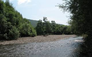 Арсеньевка — место для рыбака