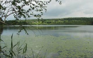 Мирнинское озеро