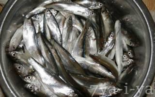 Жареная уклея — рыбные рецепты