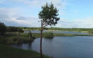 Дуванкуль озеро — место для рыбака