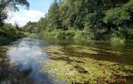 Анграпа — место для рыбака