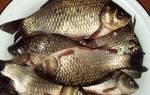 Балык из карася — рыбные рецепты