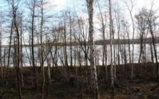 Большой Таткуль озеро — место для рыбака