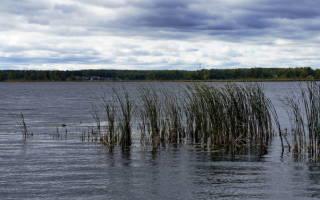 Малая Нанога озеро — место для рыбака