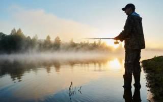 Рыбалка на Волге с Андреем Полухиным