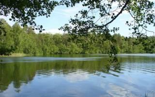 Шап озеро — место для рыбака
