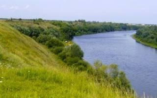 Тамбовское водохранилище — место для рыбака