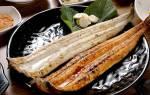 Угорь с хреном — рыбные рецепты