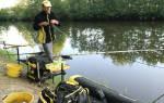 Платный водоем «Лесное озеро» — платные водоемы