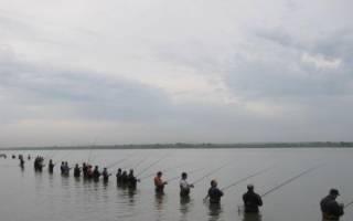 Водоем «Рыбалка у Плотины» — место для рыбалки