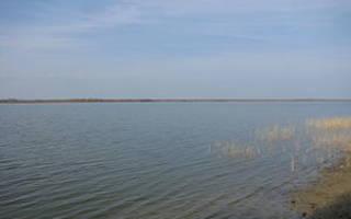 Бахматовское озеро — место для рыбака