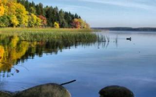 Вашутинское озеро — место для рыбака