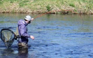Рыбалка на Дону с Павлом Фокиным