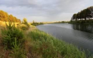 Акулинкино озеро — место для рыбака
