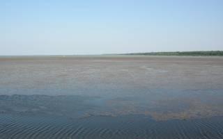Варнавинское водохранилище — место для рыбака
