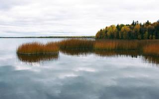 Ведлозеро — место для рыбака