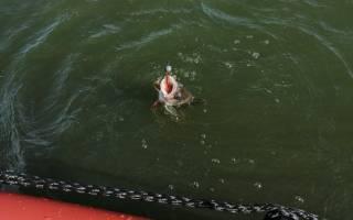 Рыбалка на Можайском водохранилище с Евгением Дугиным