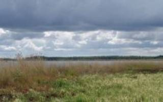 Карачура озеро — место для рыбака
