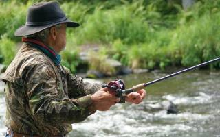 Тинарка — место для рыбака