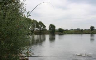 Платная рыбалка в клубе «Ба!Рыбина!» — платные водоемы