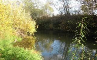 Как ловить щуку на малых реках