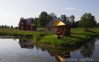 Туристическая база «Карп Савельич» — место для рыбалки