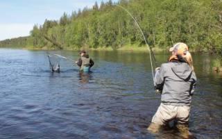 Омь — место для рыбака
