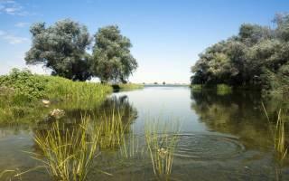 Большая Юра — место для рыбака