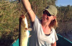 База отдыха «Рыбоход» — описание и отзывы