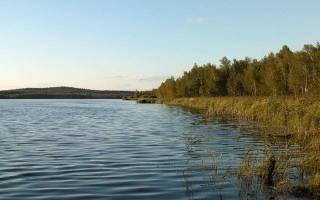Половинное озеро — место для рыбака