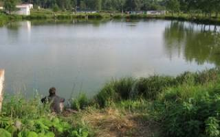Раменский рыбхоз «Гжелка» — место для рыбалки