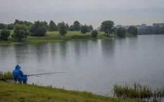 Сетунь — место для рыбака