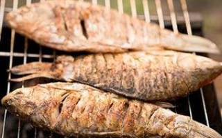 Карась на мангале — рыбные рецепты
