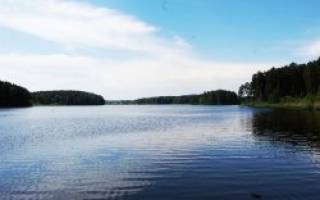 Деханов пруд — место для рыбака