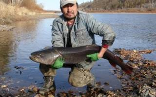 Онон — место для рыбака