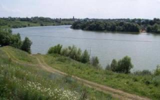 Пронское водохранилище — место для рыбака