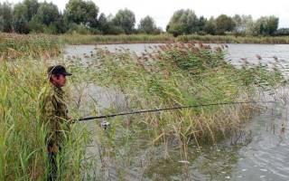 Пегтымель — место для рыбака