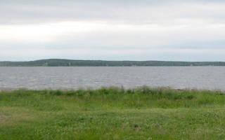 Малая Акуля озеро — место для рыбака