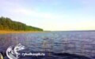 Суходольское озеро — место для рыбака