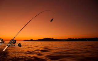 Вёкса (Костромская область) — место для рыбака