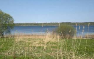 Рыбалка на озере Суходольское с Алексеем