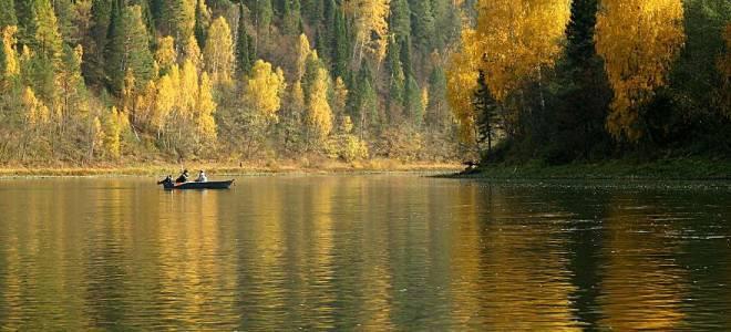 Рыбалка на реке Уфимка со специалистом