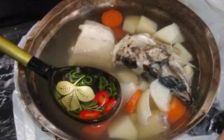 Суп из голов леща — рыбные рецепты