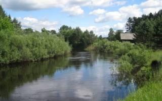 Велеса — место для рыбака