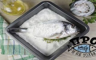 Синец, запечённый в соли — рыбные рецепты