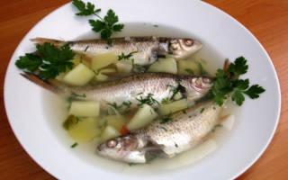 Уха из речной краснопёрки — рыбные рецепты