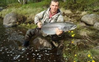 Умба — место для рыбака