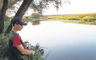 Протва — место для рыбака