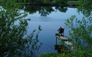 Сходня — место для рыбака