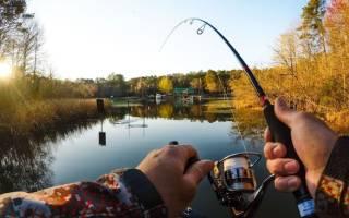 Городецкое озеро — место для рыбака